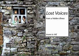 book cover with a brick wall as background and the title Lost Voices in a white box