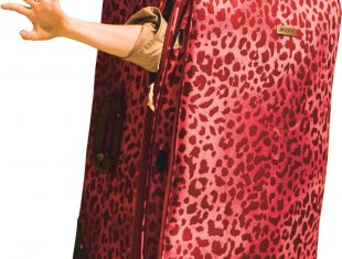 Publicity image of an arm reaching out of a large speckled, red bag