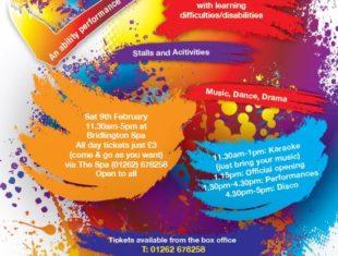 Diverse Fest poster